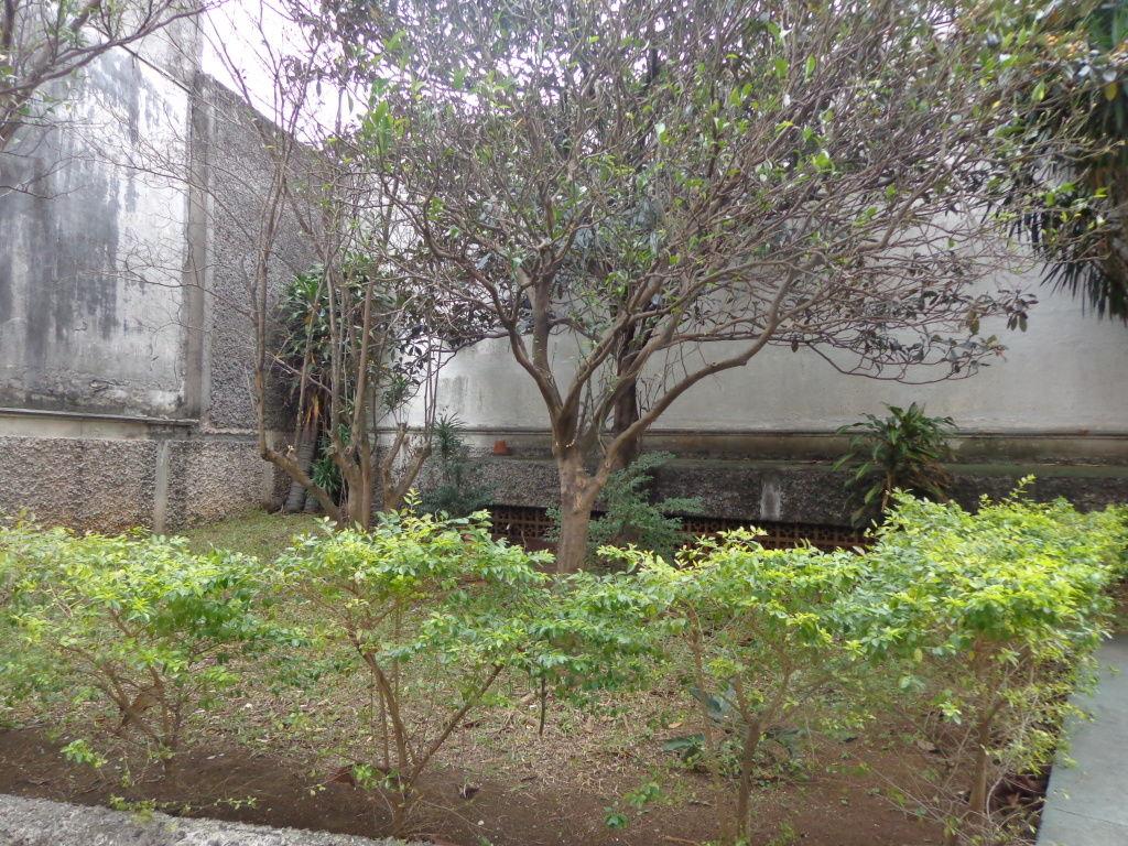 Apartamento - Bom Retiro - São Paulo - SP