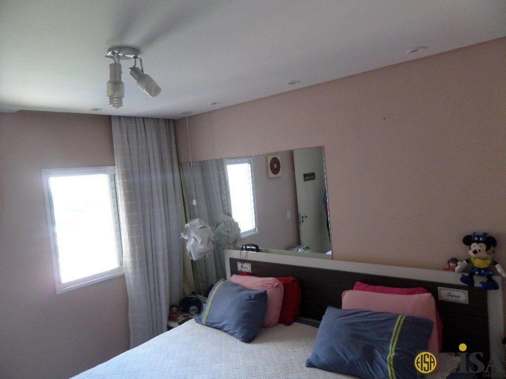 Cobertura de 3 dormitórios à venda em Vila Constança, São Paulo - SP
