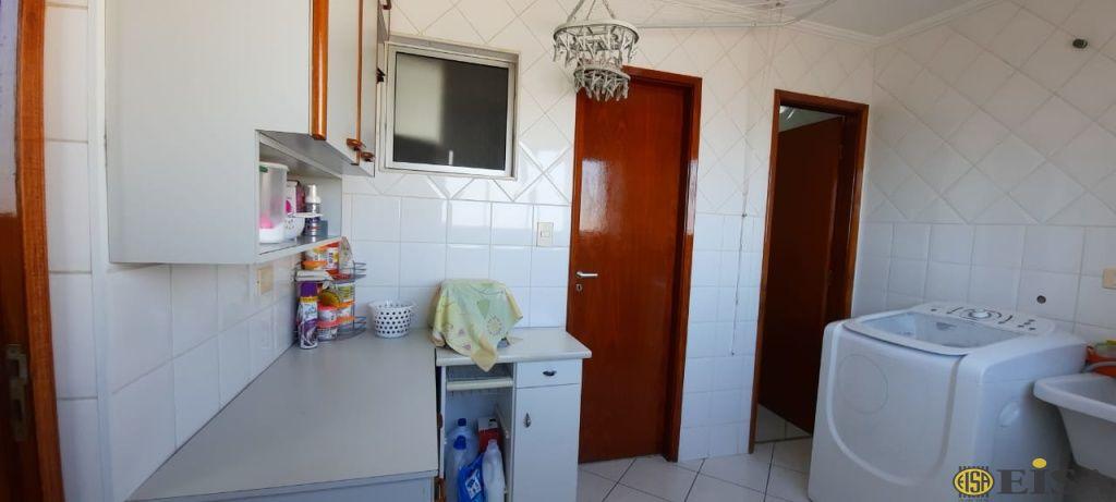 Cobertura de 3 dormitórios à venda em Parque Mandaqui, Sã?o Paulo - SP