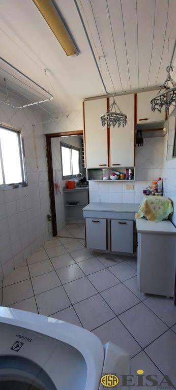 Cobertura de 3 dormitórios à venda em Parque Mandaqui, São Paulo - SP