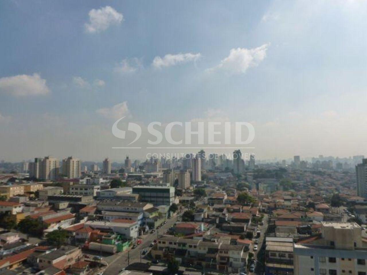 Cobertura de 1 dormitório à venda em Vila Mascote, São Paulo - SP