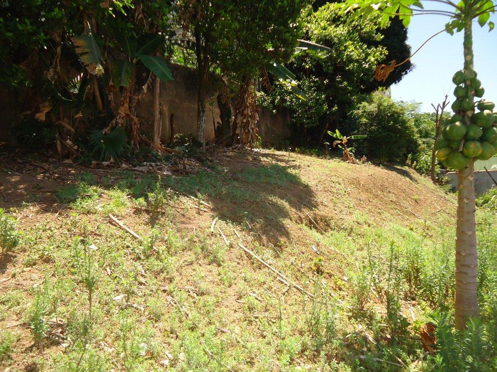 Terreno para Venda - Jardim Carlu