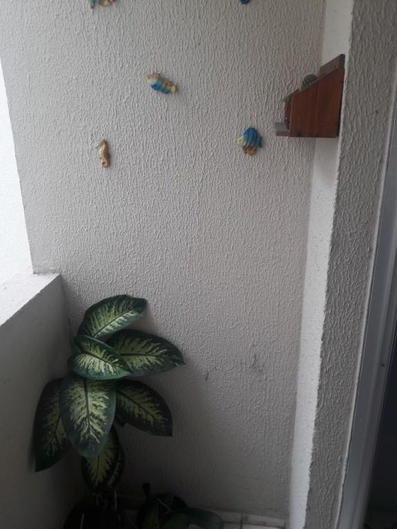 Sacada da sala do apartamento com 2 dormitórios em VILA SONIA - PRAIA GRANDE