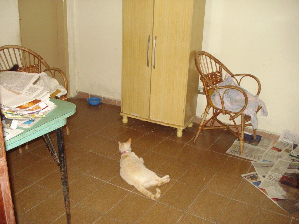 Dormitório 03 do casa geminada com 3 dormitórios em BOQUEIRÃO - PRAIA GRANDE