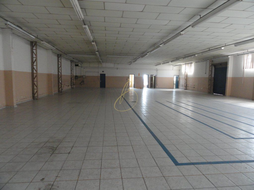 Galpão/depósito/armazém em Vila Mascote, São Paulo - SP